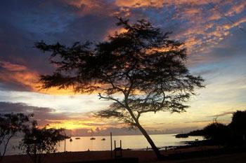 Costa del Ecuador