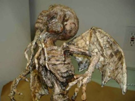 Humano Murcielago