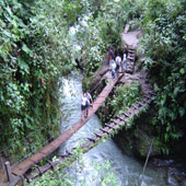 ecuador rainforest tours
