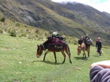 hike, hiking, andes Ecuador