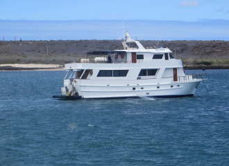 Darwin Tourist Superior Yachts From US$ 1.800 4, 5 AND 8 DAYS