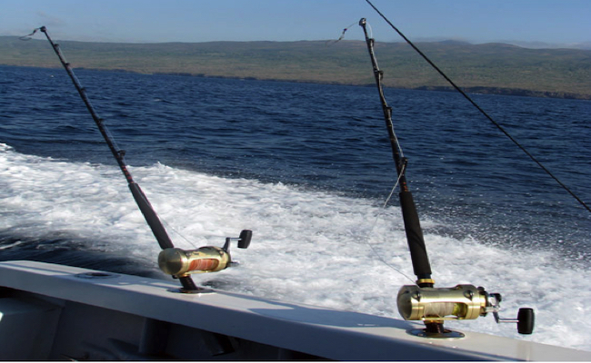 "Galapagos Fishing ""Vivencial"" Tours"