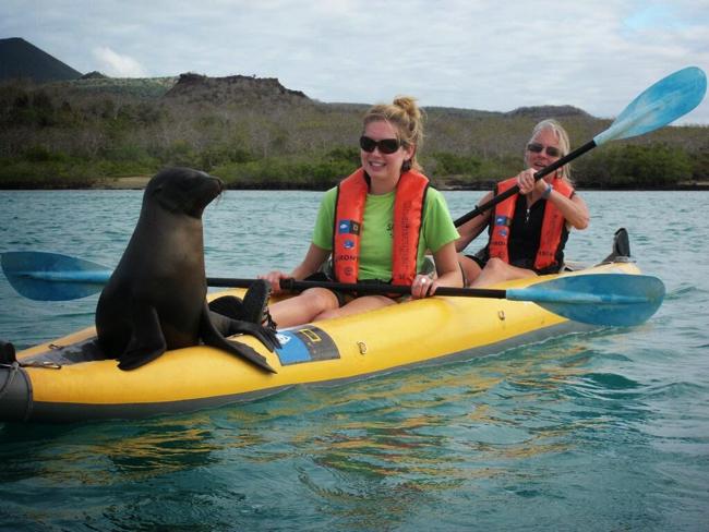 Galapagos Kayak Tours