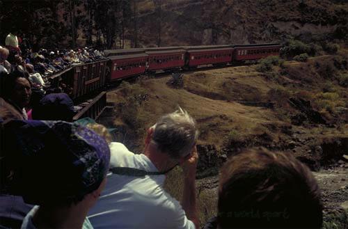 train-riobamba